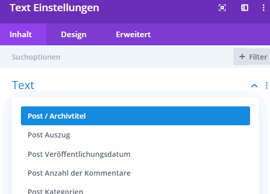 Divi Post/Archivtitel