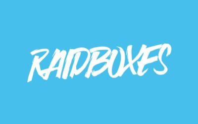 Lohnt sich das RAIDBOXES Hosting?