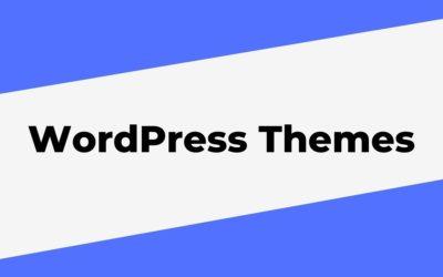 Top 3 WordPress Themes in 2021