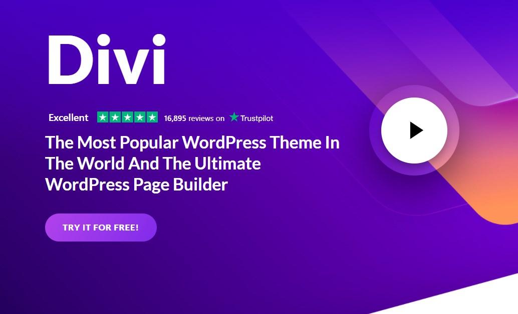 divi theme webdesign tool